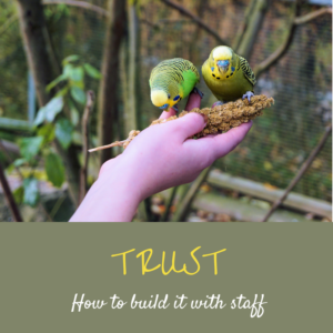 Trust - how to build it with staff