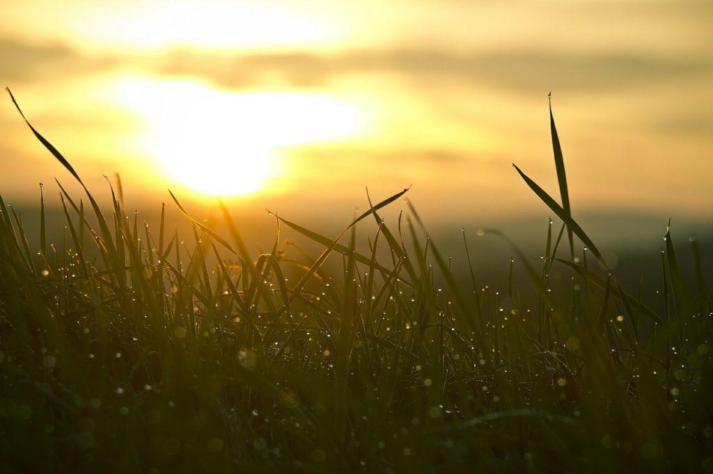 awaken fresh start