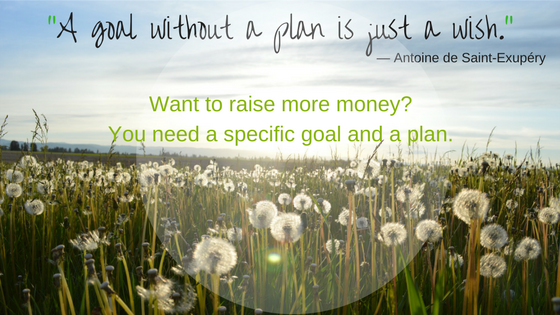 white dandelions in field: want to raise more money? Fundraising plan.