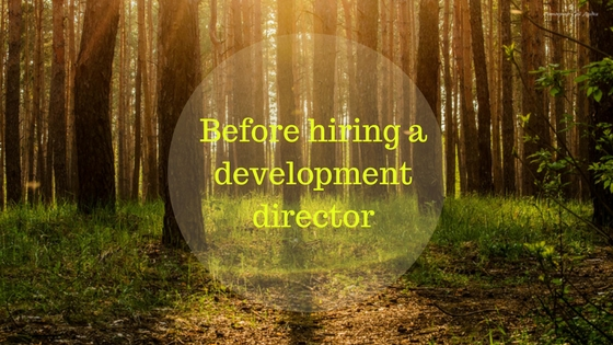 Before hiring a development director on top of a grove of trees in sunlight