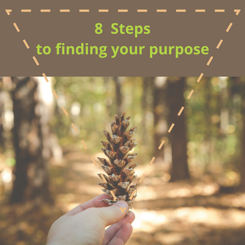 hand holding pine cone in front of a forest of pine trees with words 8 steps to finding your purpose