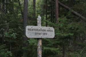 "sign in front of forest stating ""restoration area stay off"" as a symbol of saying no to things that don't fit your passion"
